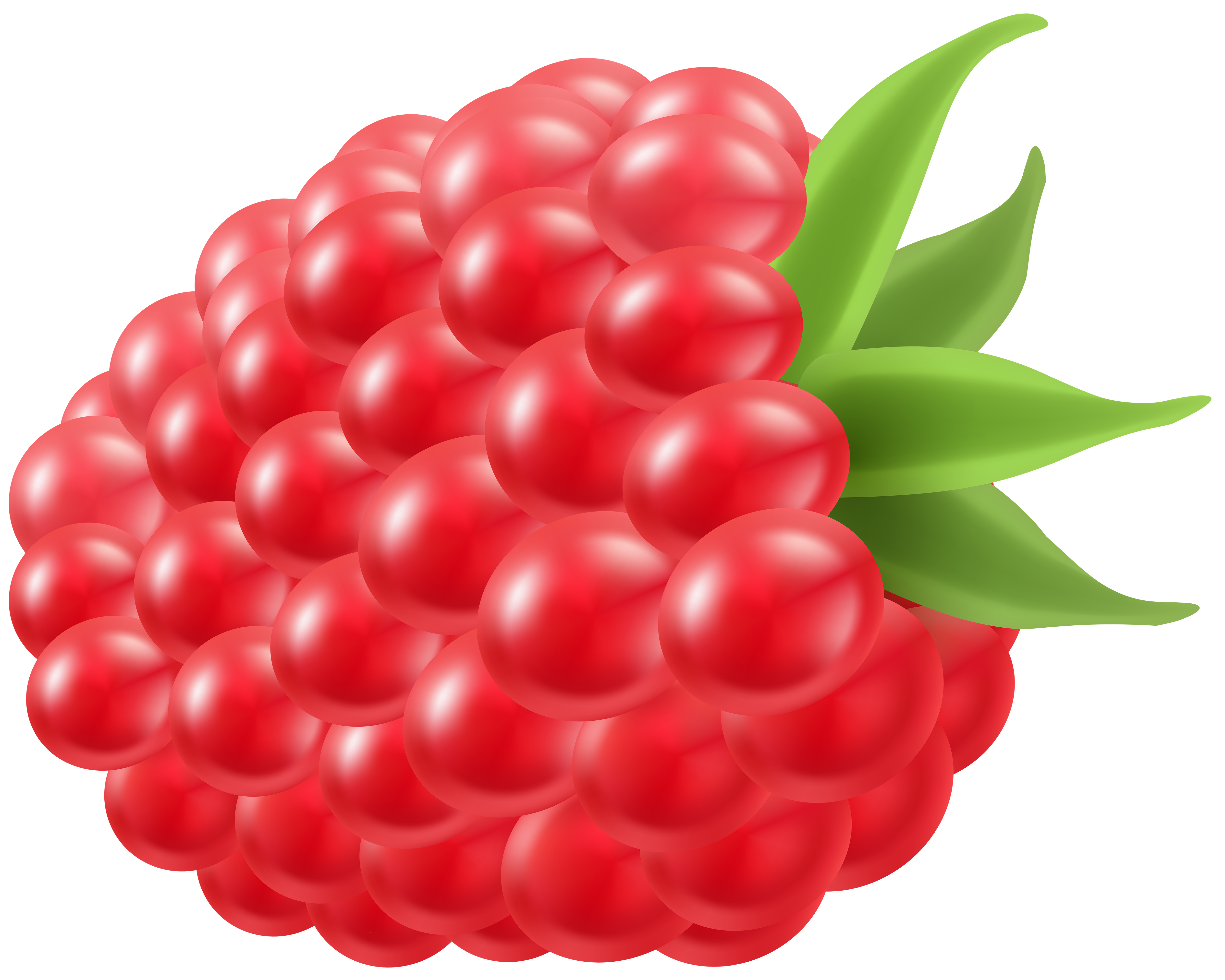 banner black and white stock Raspberry clipart. Png clip art image.