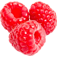 transparent download Download free png photo. Raspberry clipart.