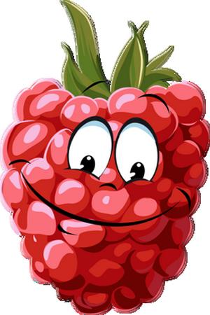 freeuse library Raspberry