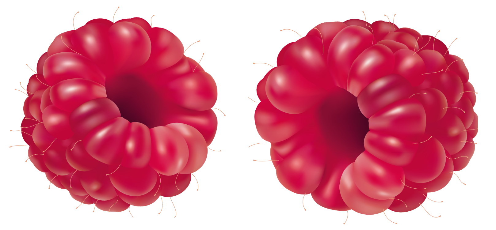png free Raspberries PNG Clipart Picture