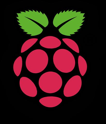 vector royalty free Raspberry Pi