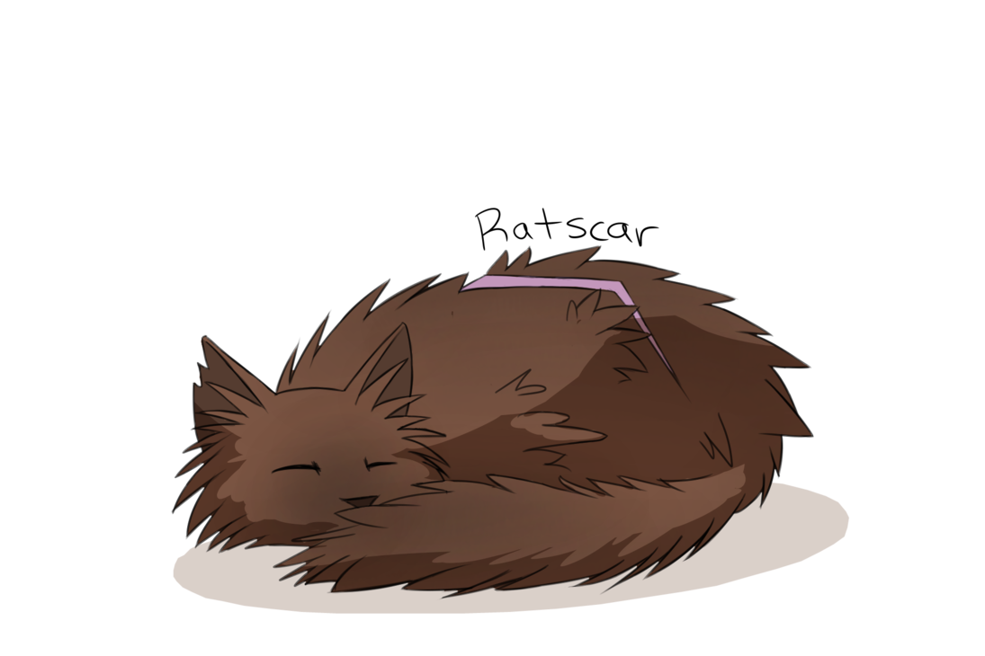 clipart freeuse download Daily Random Warrior Cats