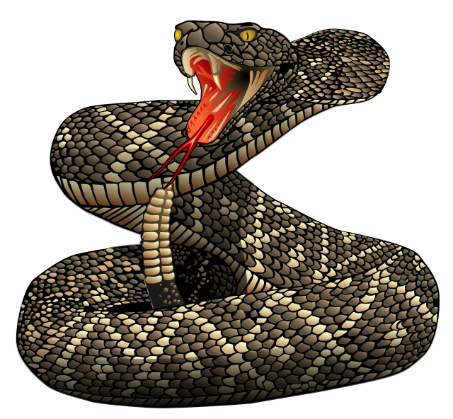 banner black and white download Rattlesnake clipart mamba free. Drawing snake poisonous