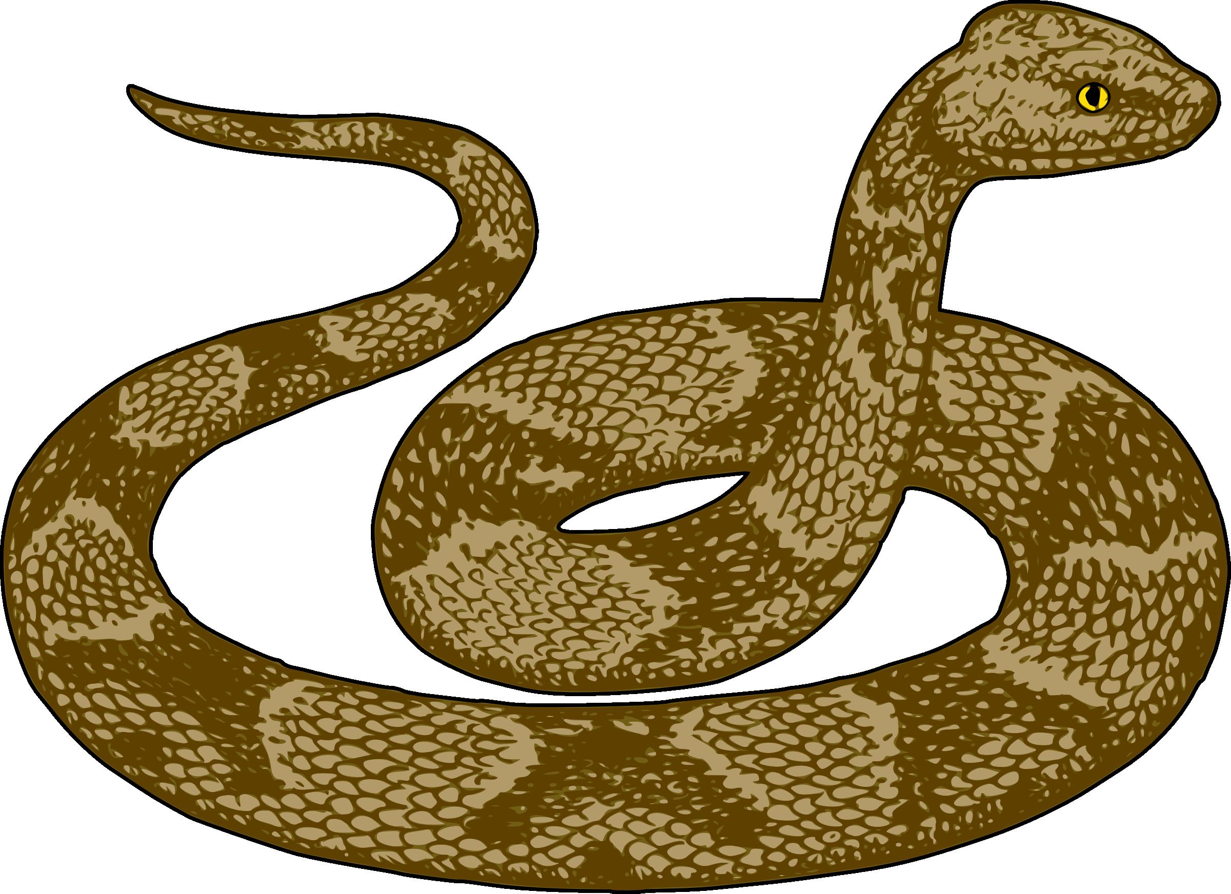 image download Rattlesnake clipart snack. Clip art free panda.