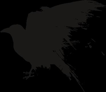 clip art Raven clipart. Icon transparentpng .