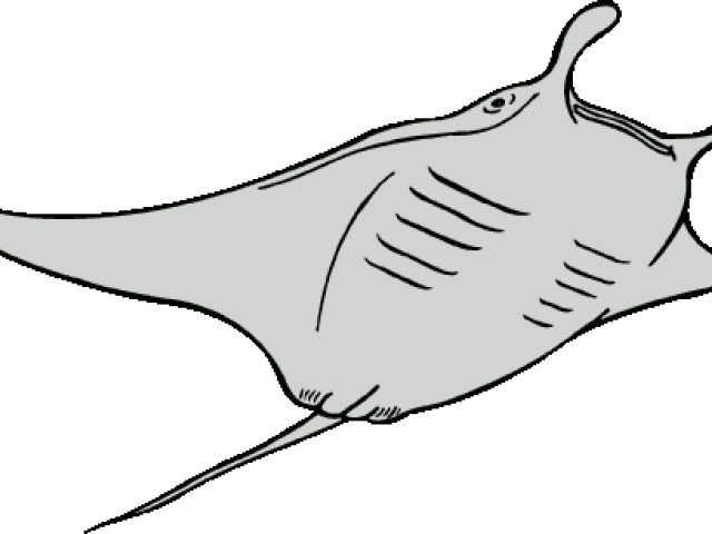 clip free library Ray clipart. Manta free on dumielauxepices