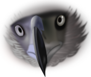 graphic black and white Realistic clipart. Eagle face clip art.