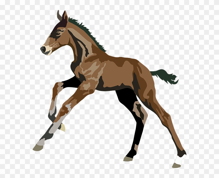 stock Realistic clipart horse. Art pinclipart