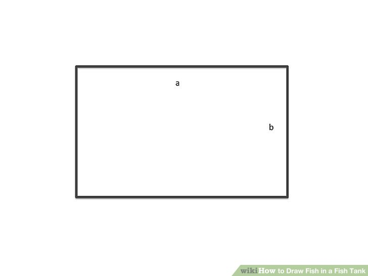 image library stock Drawing rectangle white. How to draw fish