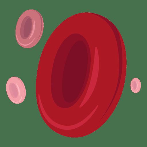 png transparent Red blood cells illustration