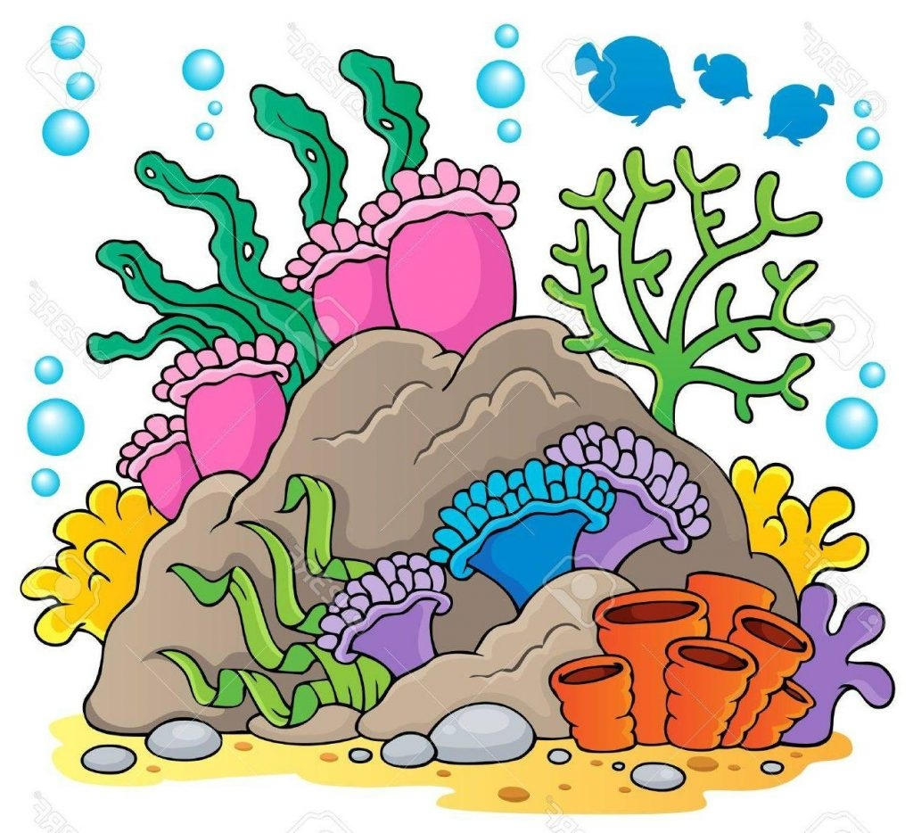 png royalty free download Coral fresh top theme. Reef clipart.