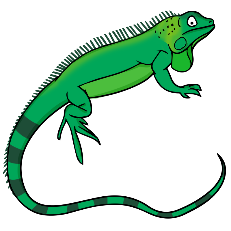 png stock Free cliparts download clip. Reptile clipart.