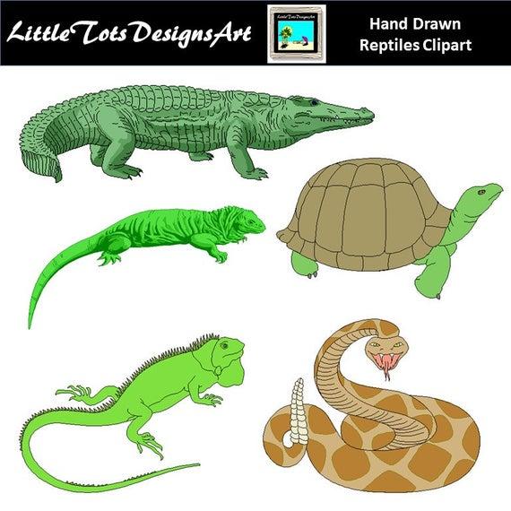 jpg transparent stock Reptile clipart. Reptiles clip art graphics.