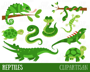 clip transparent Reptile clipart. Reptiles .