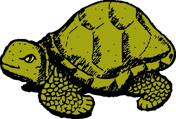 png download Clip art panda free. Reptile clipart.