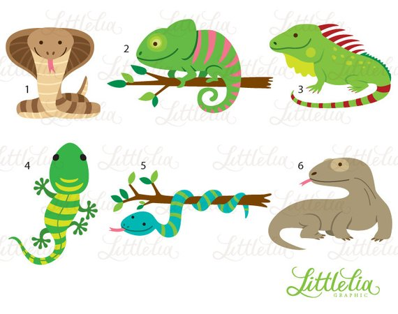 clip freeuse download Cute products clip art. Reptile clipart.