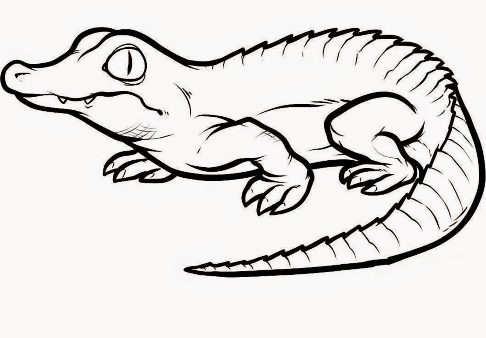 graphic royalty free stock reptiles drawing alien #139733317