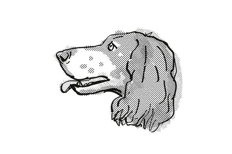 banner library library French spaniel dog breed. Retro drawing.