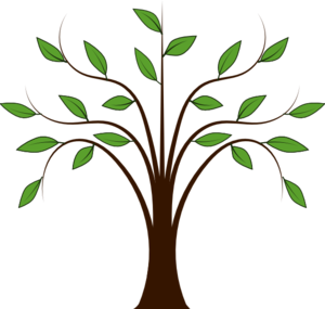 image transparent stock Family Tree Clipart