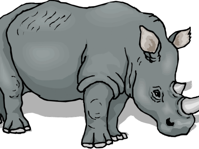 jpg library download Rhino clipart. String lights cliparts free.