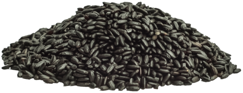 banner royalty free stock Black Rice