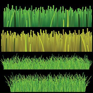 clip free Amado camilla santos gr. Vector bushes grass