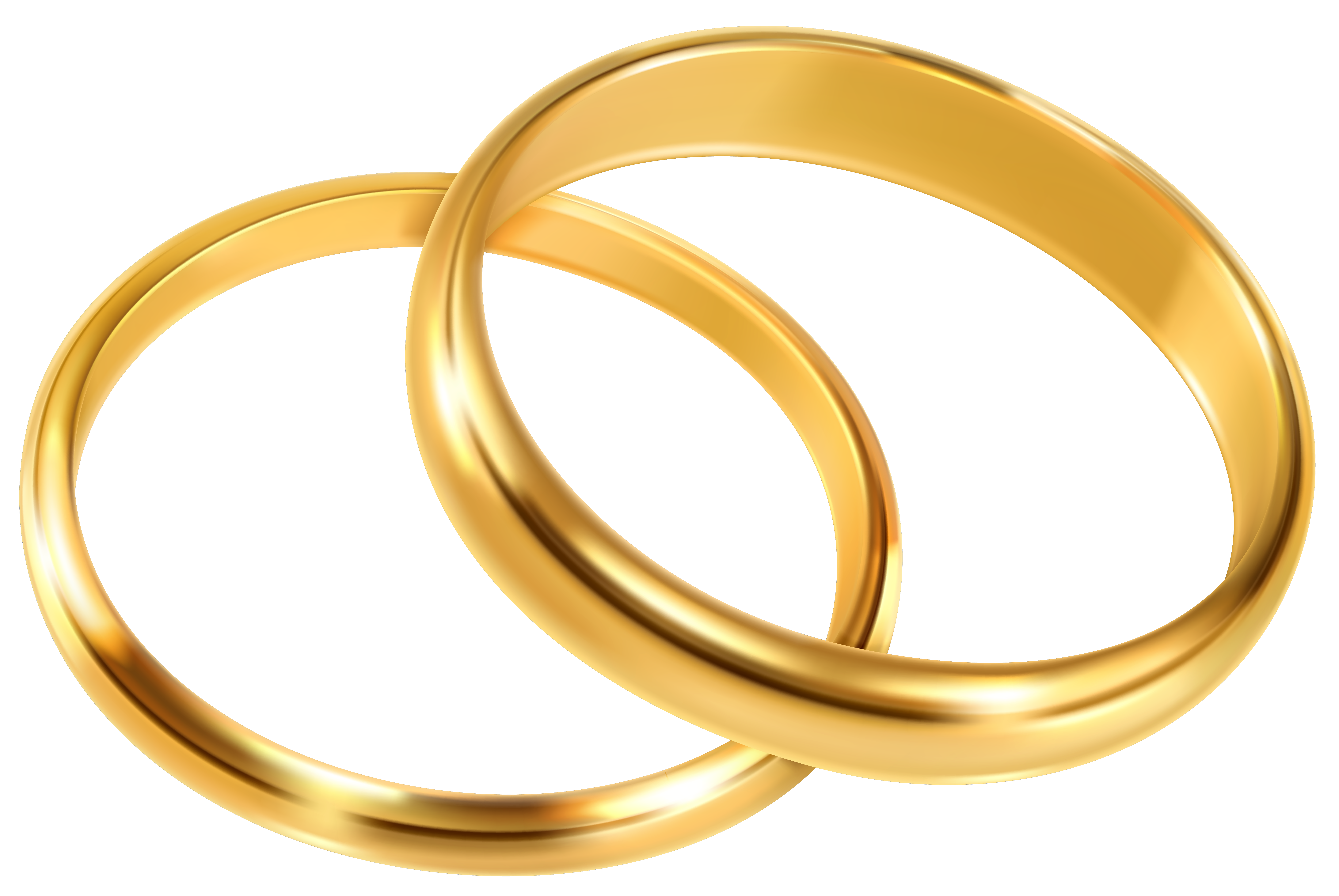 clip art library Rings png clip art. Marriage clipart wedding band.