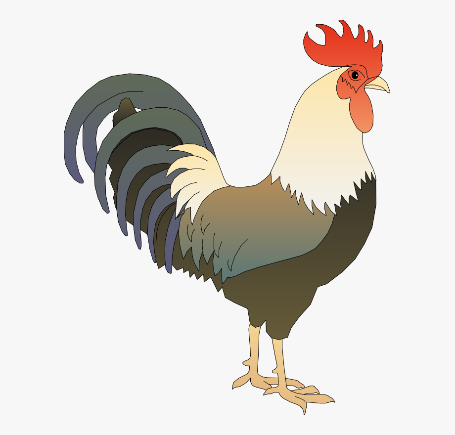 picture royalty free download Rooster clipart. Art gambar ayam jago.
