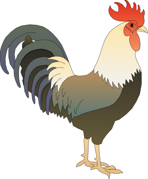 vector royalty free Rooster clipart. Clip art at clker.