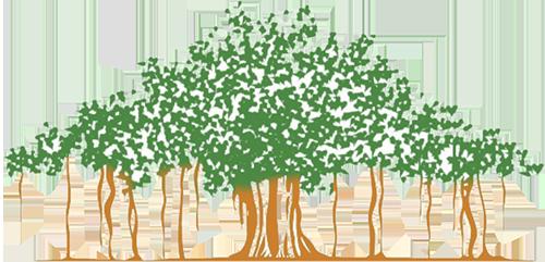 clip art free library vector roots banyan #118420817