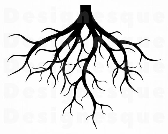 banner transparent library Svg tree family files. Roots clipart.