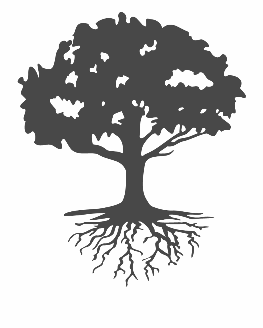 image transparent stock Roots clipart landscaping. Look at life differently.