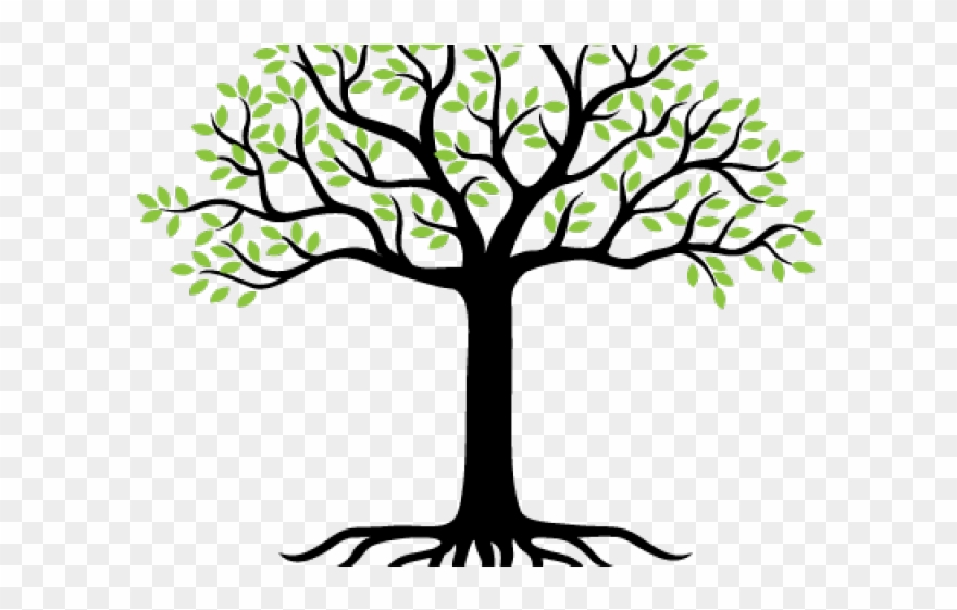 jpg library download Png download pinclipart . Roots clipart landscaping.