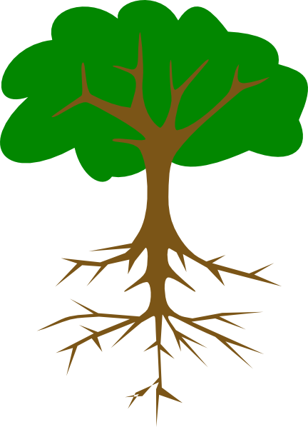 graphic library library Root Clipart
