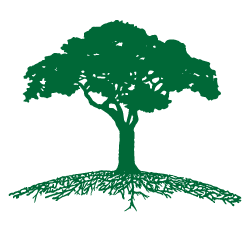 clip transparent download Green Roots Tree Care