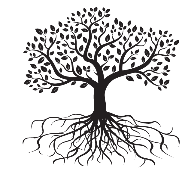 svg freeuse download roots transparent treewith #102416844