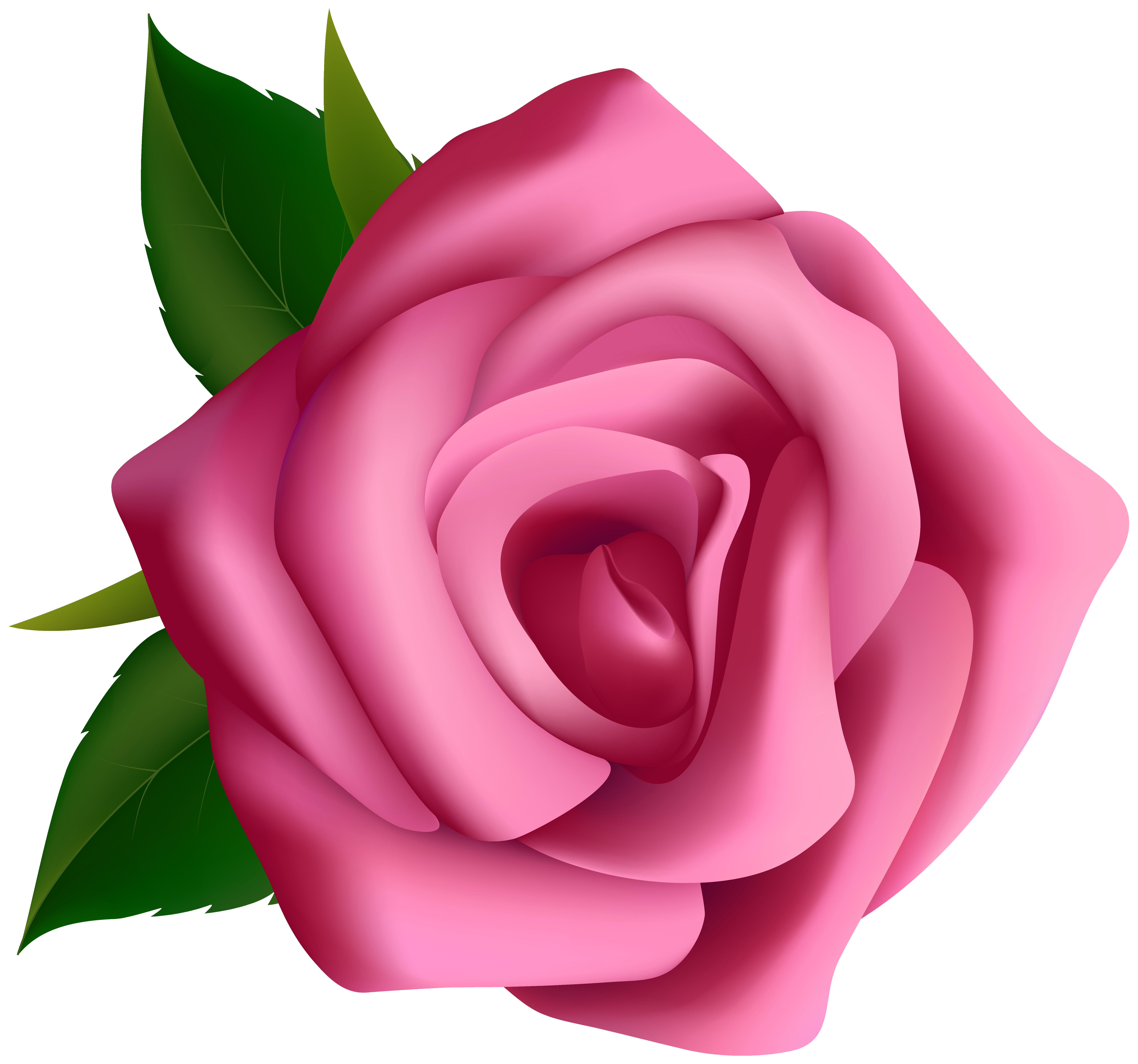 black and white library Pink Rose Clipart PNG Image
