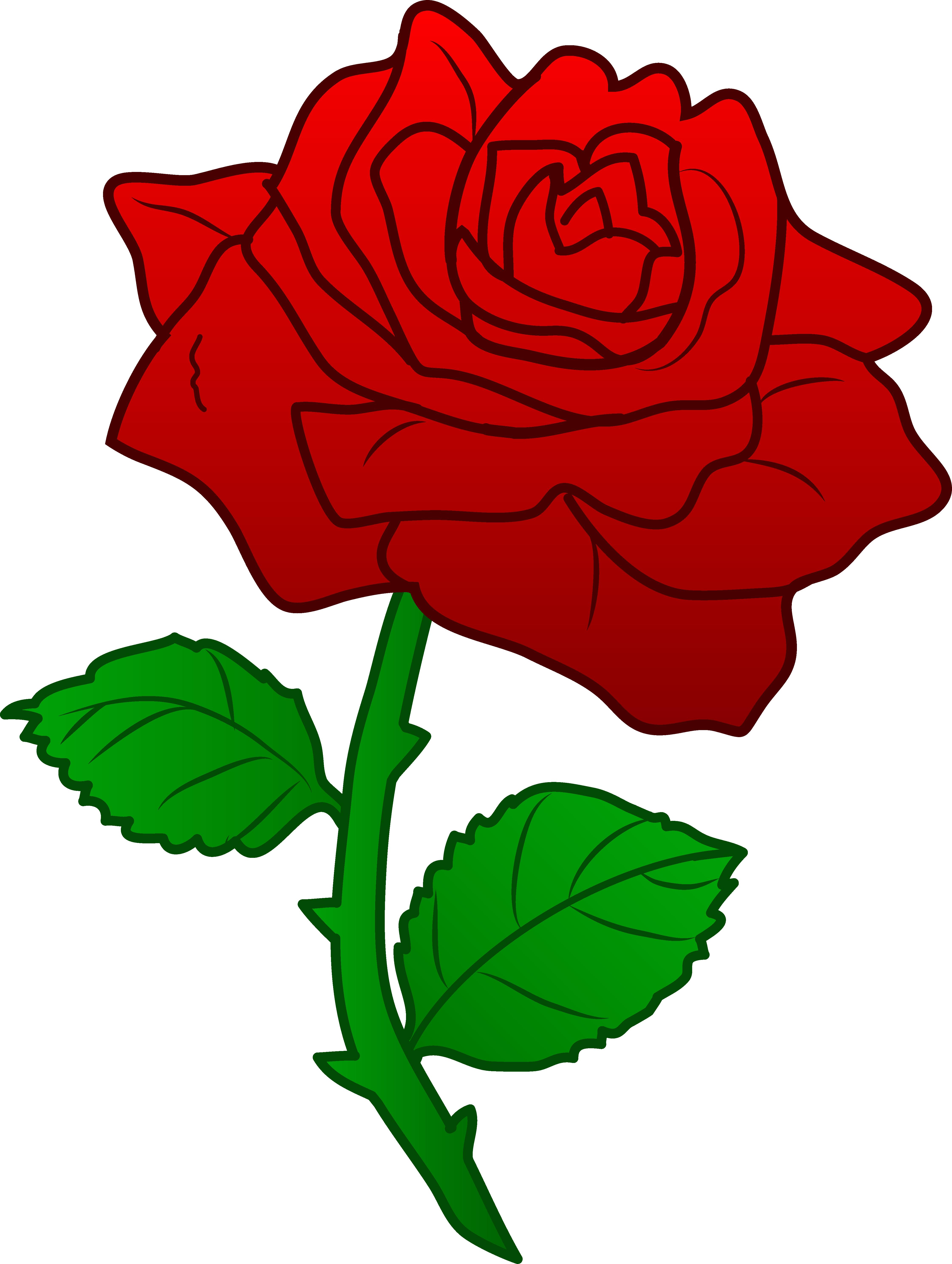 clip transparent library Blossom clipart rose. .