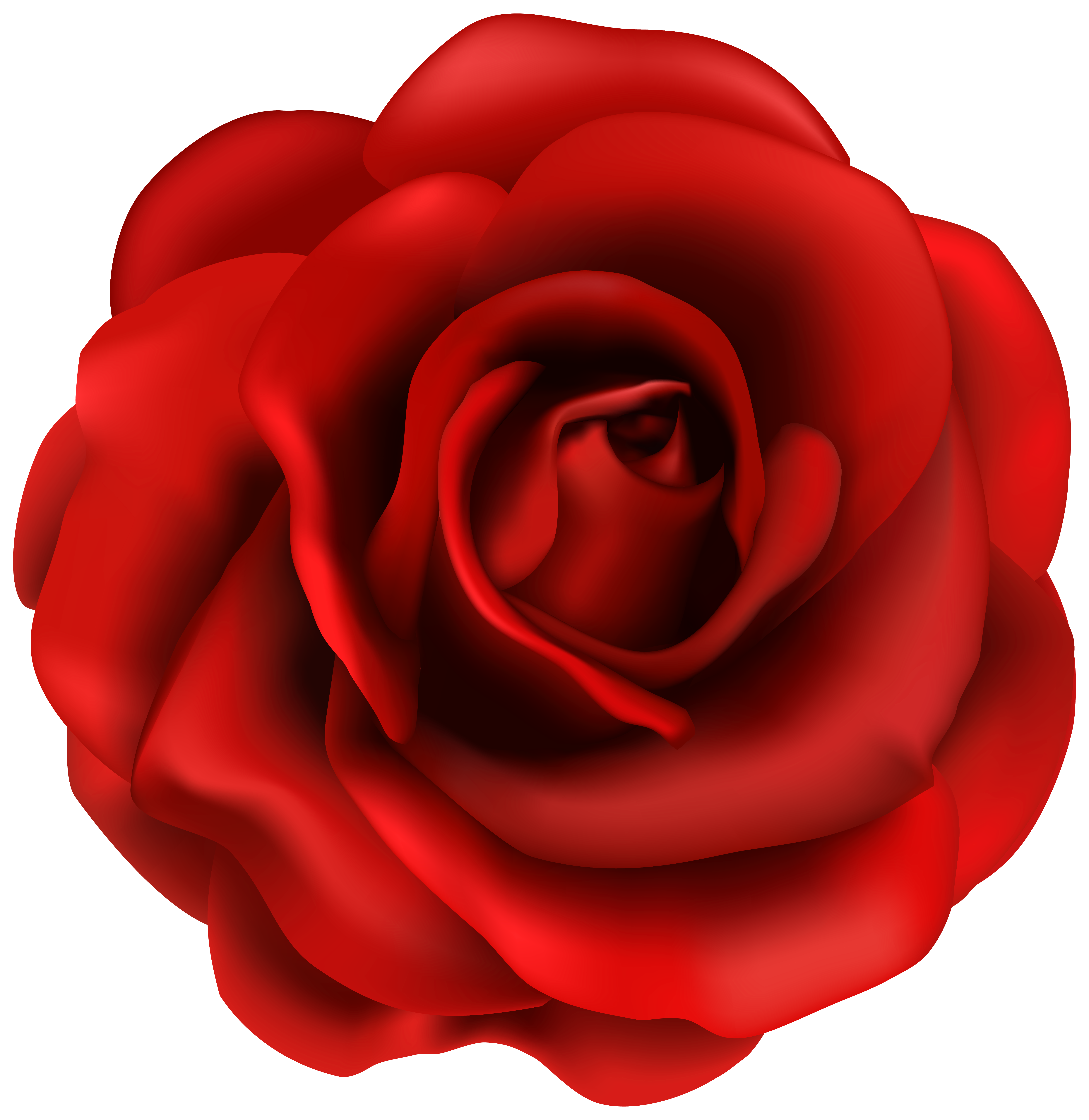 clipart royalty free Rose flower clipart. Red png image gallery