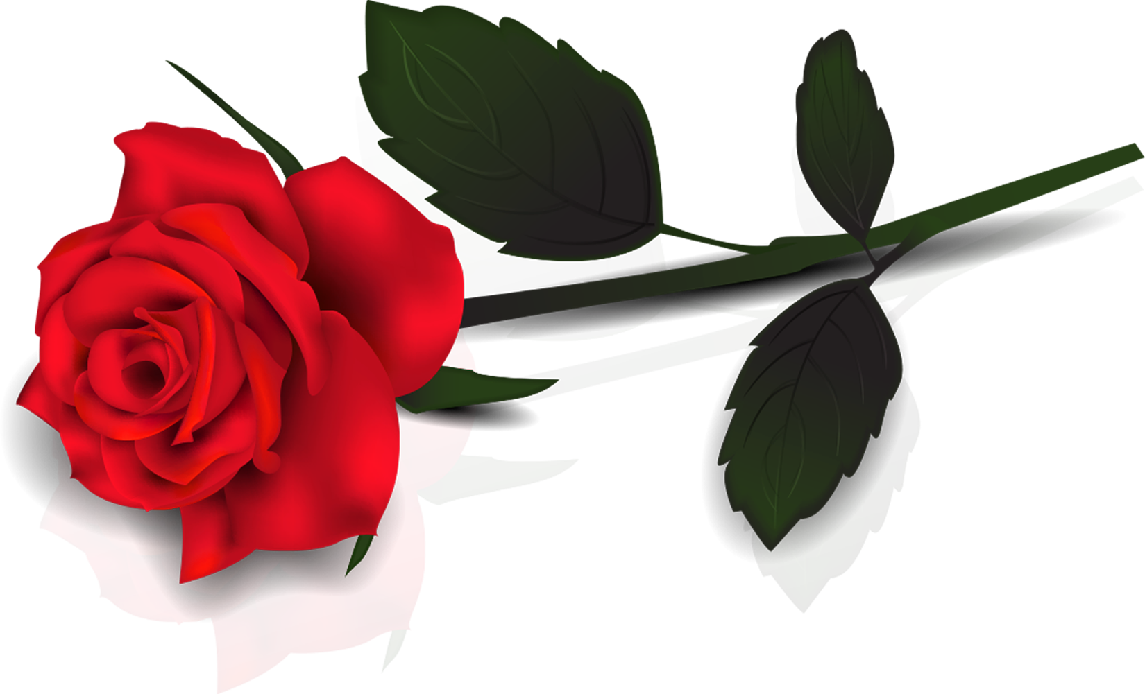 clip art free library Single red rose clipart