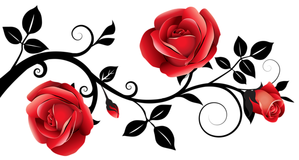 vector freeuse Red and Black Decorative Roses PNG Clipart Image