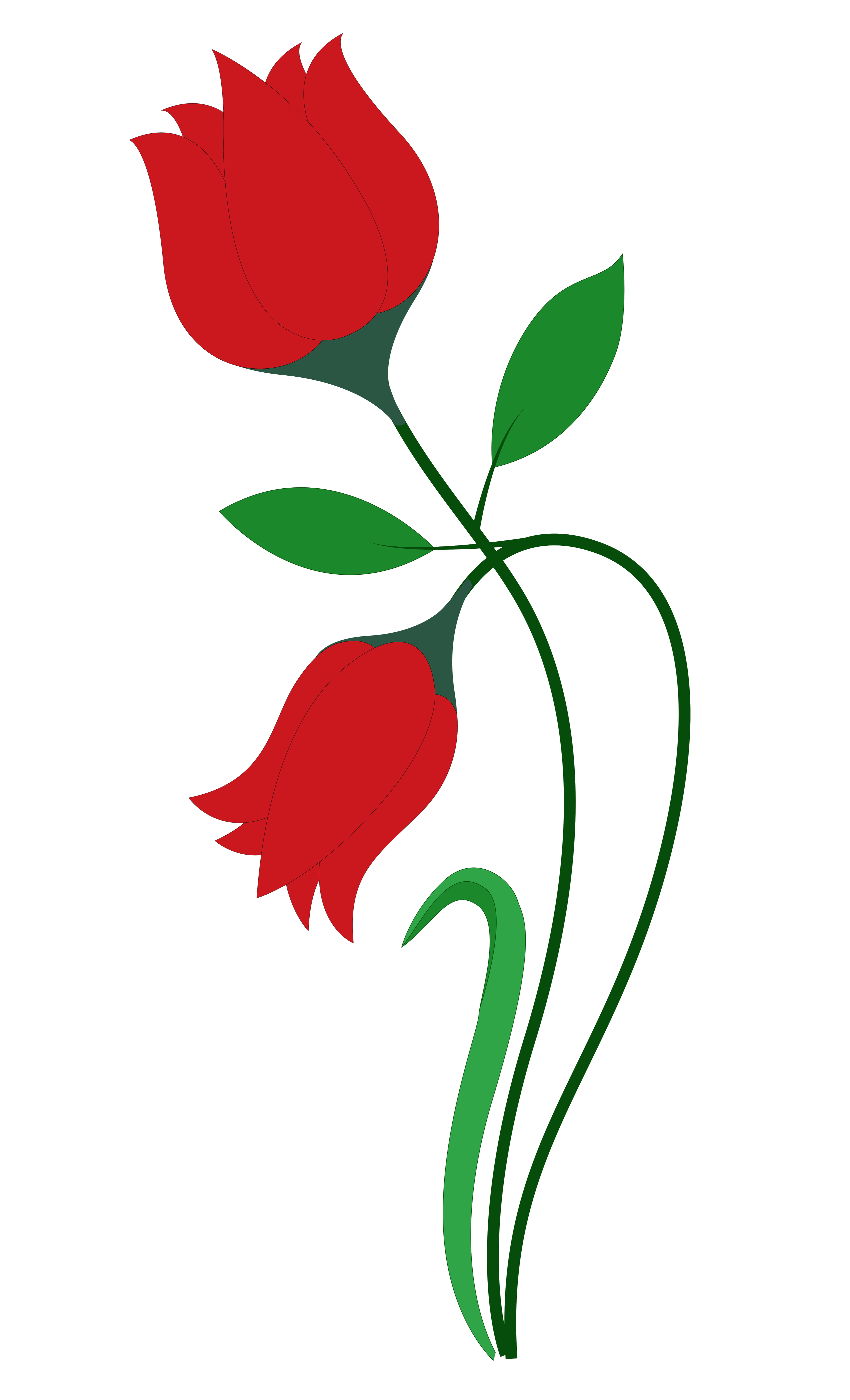 clipart freeuse library Blossom clipart rose. Flower at getdrawings com.