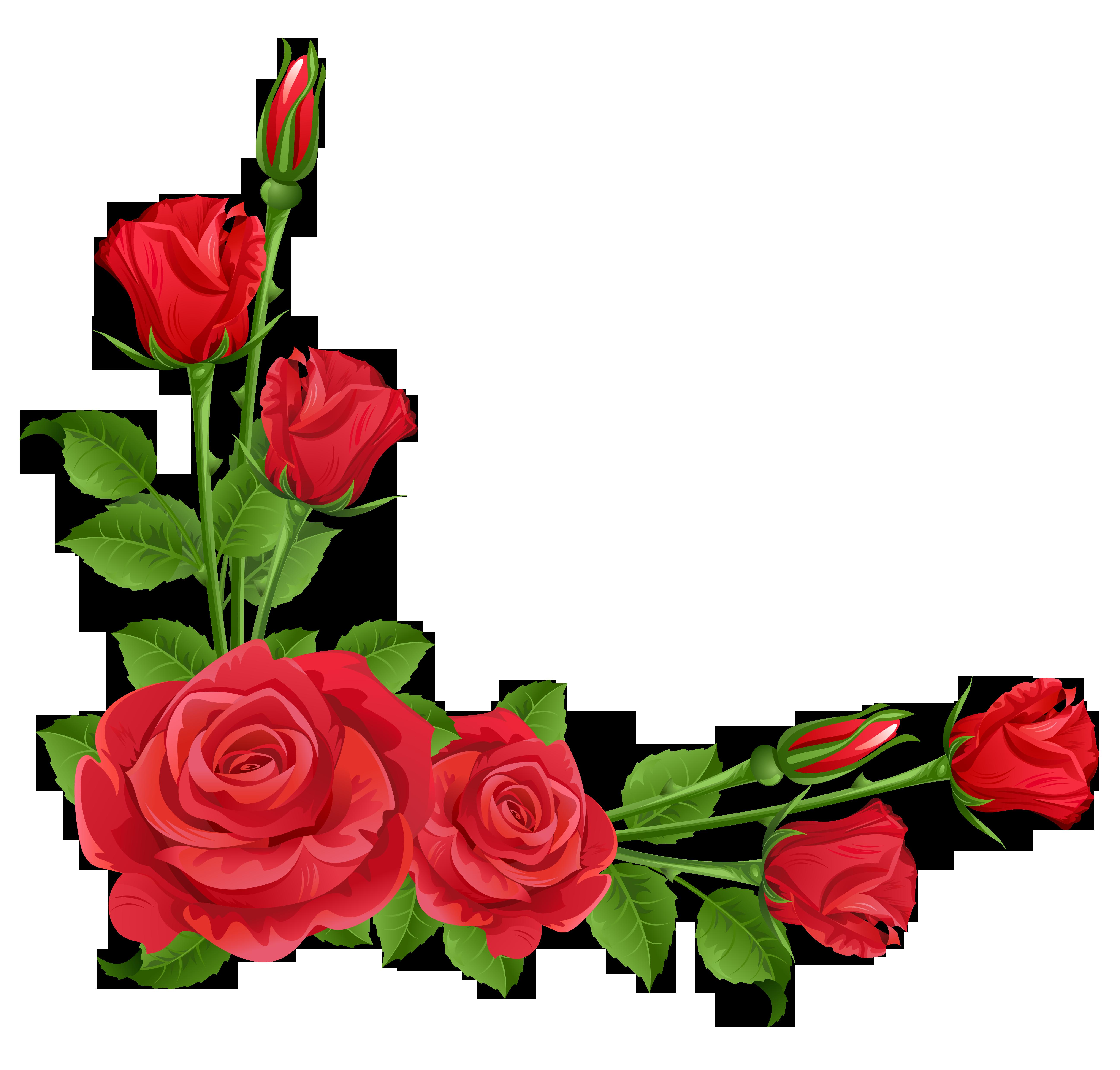graphic transparent download Red transparent png frames. Roses clipart.