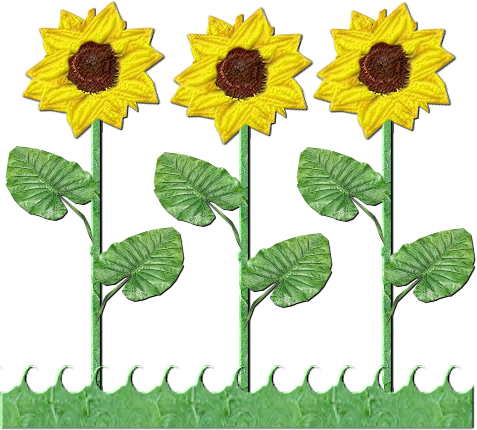 banner freeuse stock Trees clipart sunflower. Flowers row of sunflowers