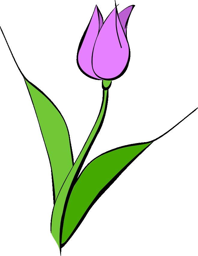 jpg freeuse Tulip border clipart. Panda free images clip