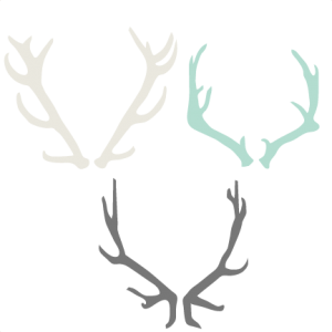 png free stock Collection of free Branch vector antler