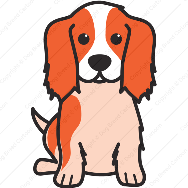 png black and white stock King charles spaniel color. Saber clipart cavalier