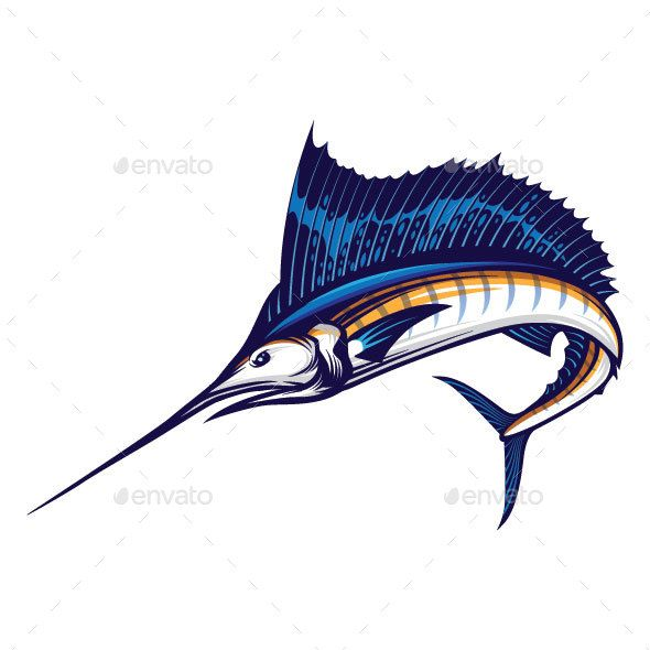 png Sailfish vector. All about fish research