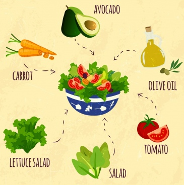 picture transparent Free download for . Salad vector
