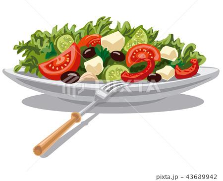 picture library Salad vector. Vectors pixta
